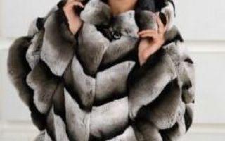 Что это за мех — шуба из рекса особенности шуб из кролика рекса, качество и модели