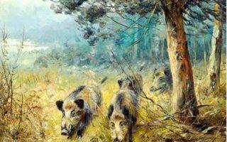 Белорусские охотники смогут проводить ветеринарную экспертизу добытых кабанов анонимно