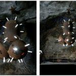 Мебель из морских мин от mati karmin