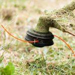 11 лучших электрических триммеров для травы 2019 — какой выбрать Рейтинг моделей
