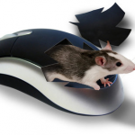 Какая мышь лучше — лазерная или оптическая