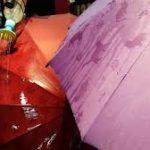Зонты со скрытым рисунком особенность аксессуара, стоимость