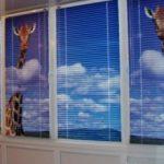 Фотожалюзи на пластиковые и деревянные окна, в чем их плюсы