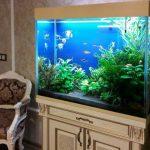Как сделать аквариум из стекла своими руками инструкция, выбор клея, толщины стекла