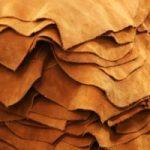 Чем спилок отличается от замши Характеристики материалов