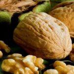 Грецкий орех популярные сорта дерева с фото, особенности посадки и ухода, способы размножения