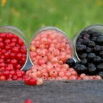 Выращивание смородины посадка и уход, обрезка, фото
