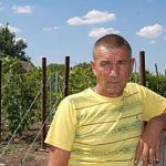 Виноград Заря Несветая описание сорта, фото, отзывы
