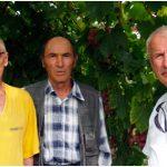 Виноград Богатяновский описание сорта, фото, отзывы