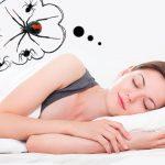 Что значит видеть во сне паука толкование снов