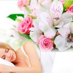 Цветы во сне значение по разным сонникам