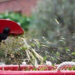 Топ лучших садовых измельчителей для веток и травы