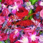 Поздравления с днем рождения женщине в стихах красивые коллеге