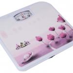 Описание напольных весов Rolsen RSM1204