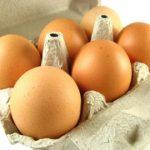 Хранение куриных яиц для инкубации и для употребления в пищу в домашних условиях