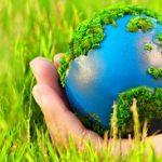 Что такое биосфера, определение, её экологические проблемы и общественные организации, которые их