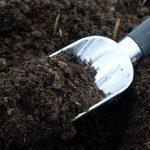 Что это такое дерновая земля где ее взять, разновидности, инструкция по заготовке земельной смеси