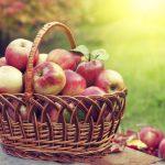 Традиции, обряды, приметы и молитвы на Спас Яблочный