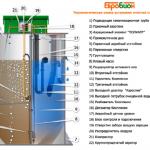 Принцип работы и нюансы монтажа септика Евробион