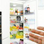 Лучшие модели холодильников от компании Gorenje на 2019 год