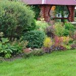 Миксбордер в ландшафтном дизайне своими руками подбор и название многолетних растений, схема и фото