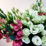 Цветы, из которых можно составить букеты, их название и описание