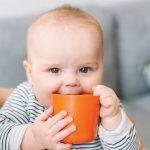 Рейтинг лучших поильников для малышей в 2019 году