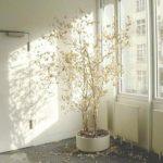 Пленка на окно от солнца виды и особенности применения