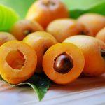 Мушмула японская (локва) — полезные свойства, выращивание в домашних условиях