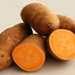 Картофель сладкий описание и свойства батата, выращивание, применение и где купить этот овощ